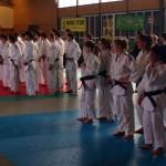 Compétition Open Brignais 10 février 2013 (5)