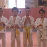 Compétition Coupe ARJ Poussins Aix les bains 21 avril 2013 (10)