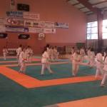 Compétition Culoz 08 mai 2013 (1)