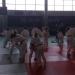 Compétition interdépartemental par équipes Rumilly 04 mai 2013 (6)