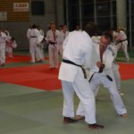 Entrainement Ayumi Tanimoto Rumilly 18 octobre 2013 (10)