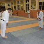 Entrainement Commun ARJ 28 mars 201 (4)
