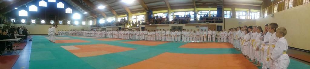 Coupe départementale Poussins Chambery 01 novembre 2014 (1)